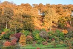 Castle Hill Gardens near South Molton
