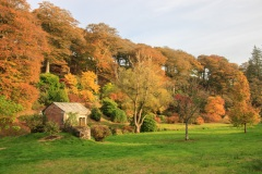 Castle Hill Estate in the Autumn