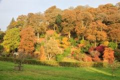 Castle Hill Estate in the Autumn