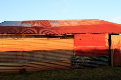 Corrugated shed on Exmoor near Challacombe