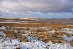 January: Exmoor