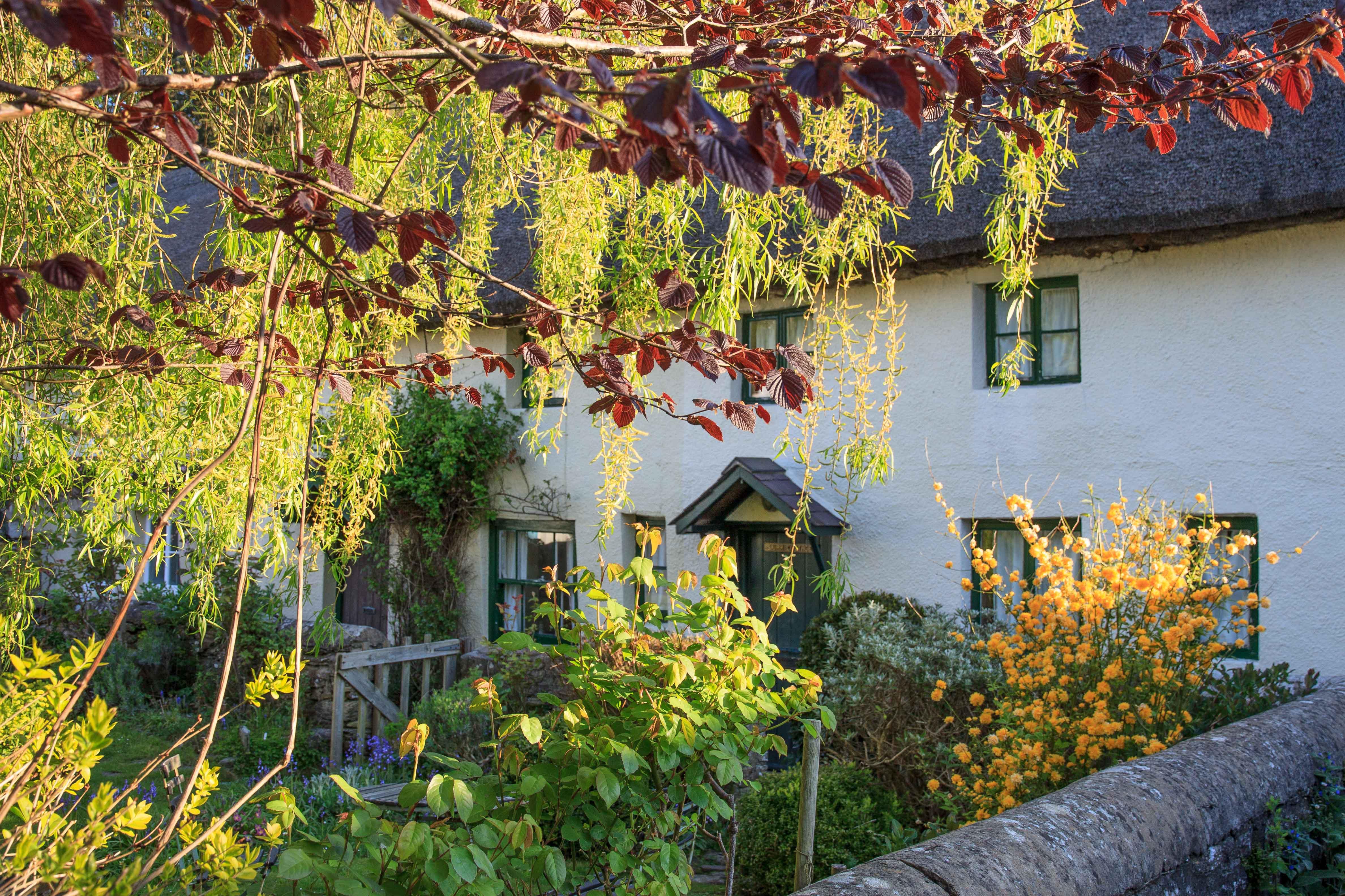 April: Henry Williamson's Cottage in Georgeham