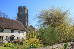 Henry Williamson's cottage and St George's Church in March
