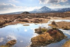 Leum Uilleim, a Corbett on Rannoch Moor above Corrour station. March 2015.