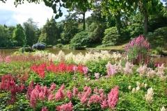 Marwood Hill Gardens