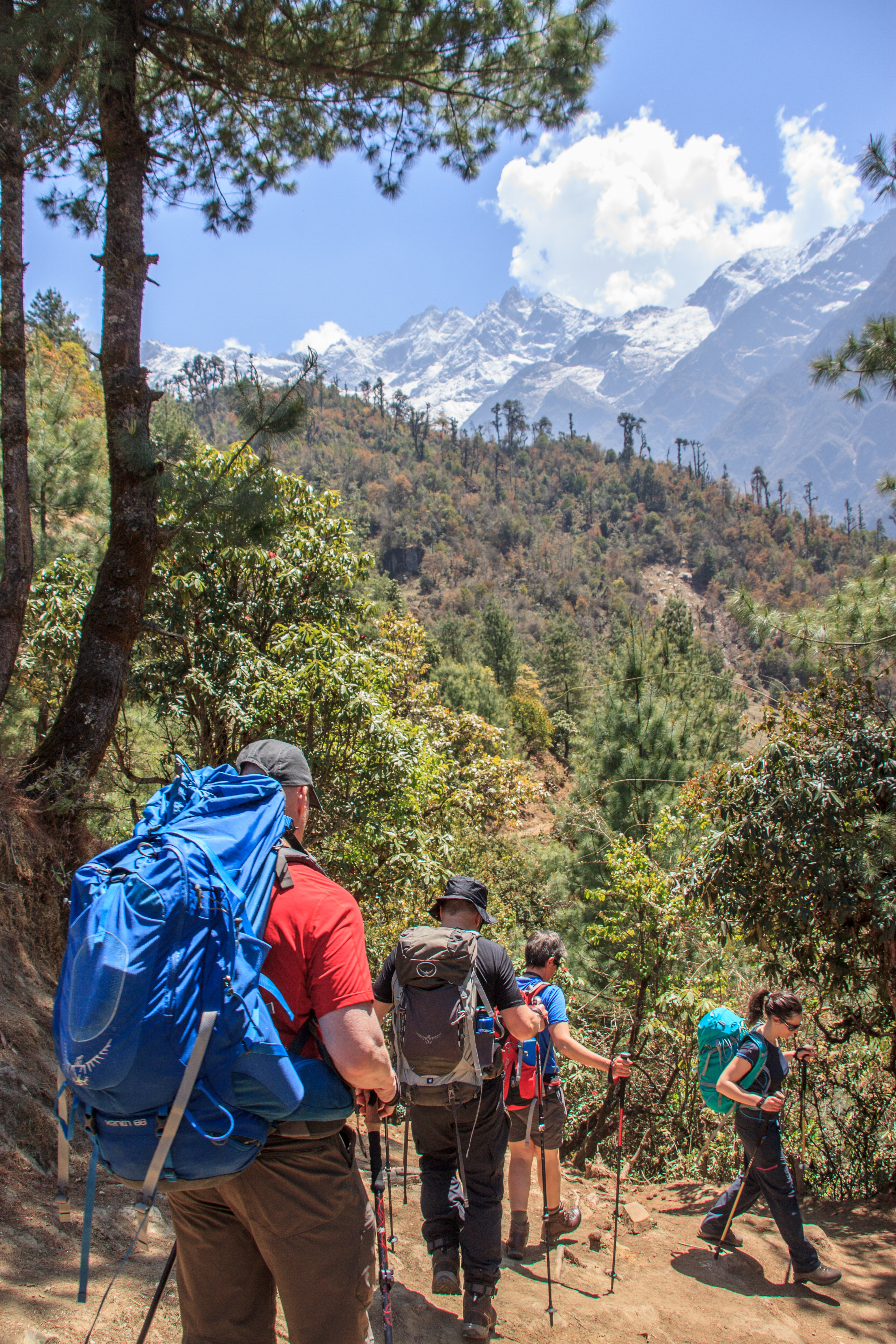 The first day - descending from Lukla to the valley below!