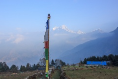 Prayer Flag in the early morning