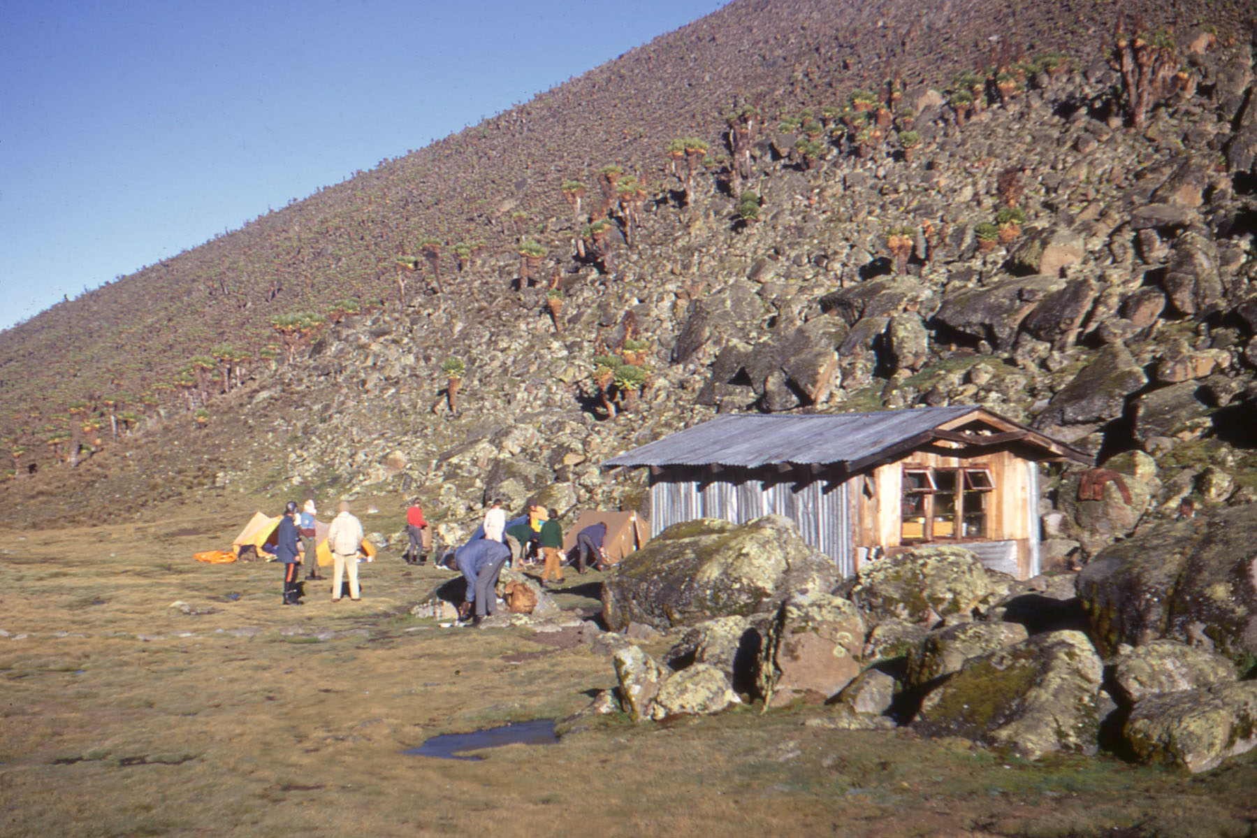 Mt-Kenya-1971003_Low-Res