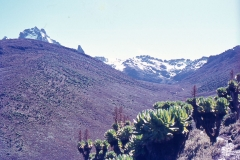 Mt-Kenya-1971006_Low-Res