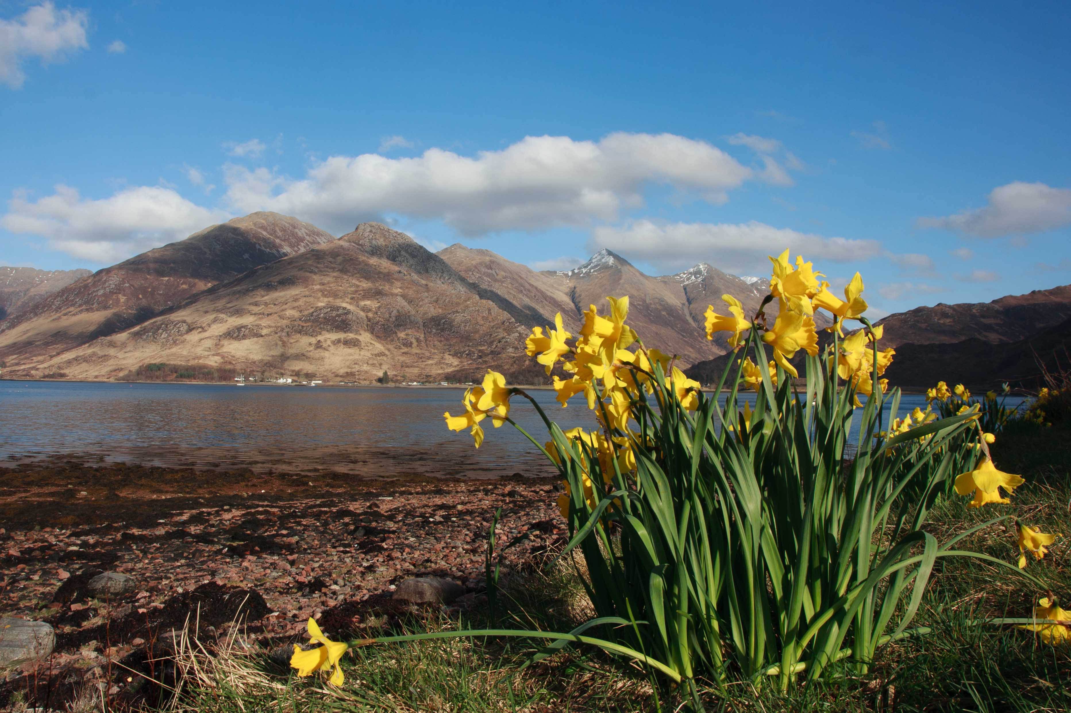 The Severn Sisters of Kintail from Ratagan Youth Hostel on  Loch Duich. April 2013.