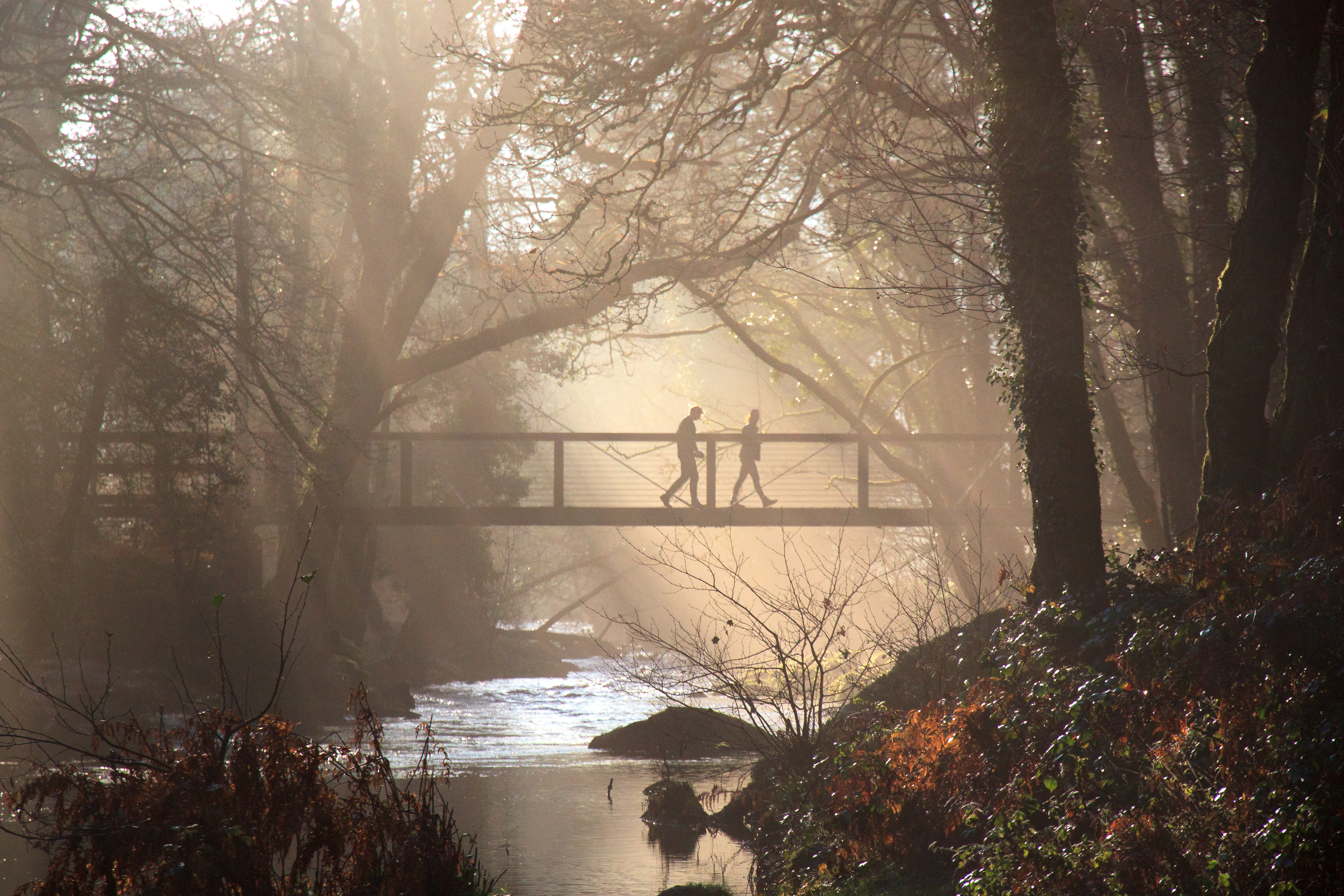 Footbridge Across the River Teign near Dartmoor