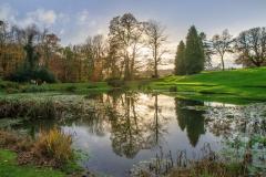 Lake at Arlington Court (National Trust)