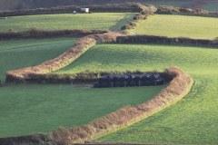Devon Fields near Georgeham