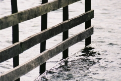 Fence in Lake
