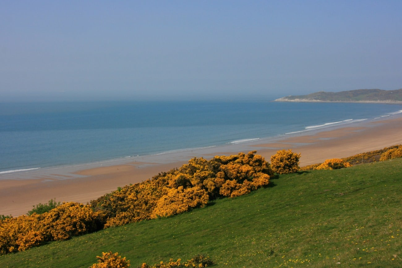 Woolacombe-Down-2419