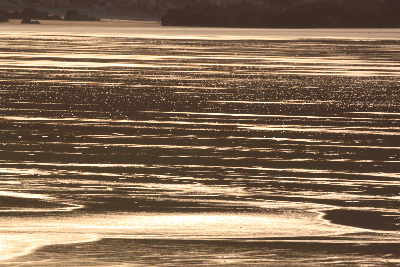 Golden reflections on Putsborough Beach. January 2015.
