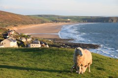 Woolacombe and Putsborough Beach from Morthoe. April 2015.