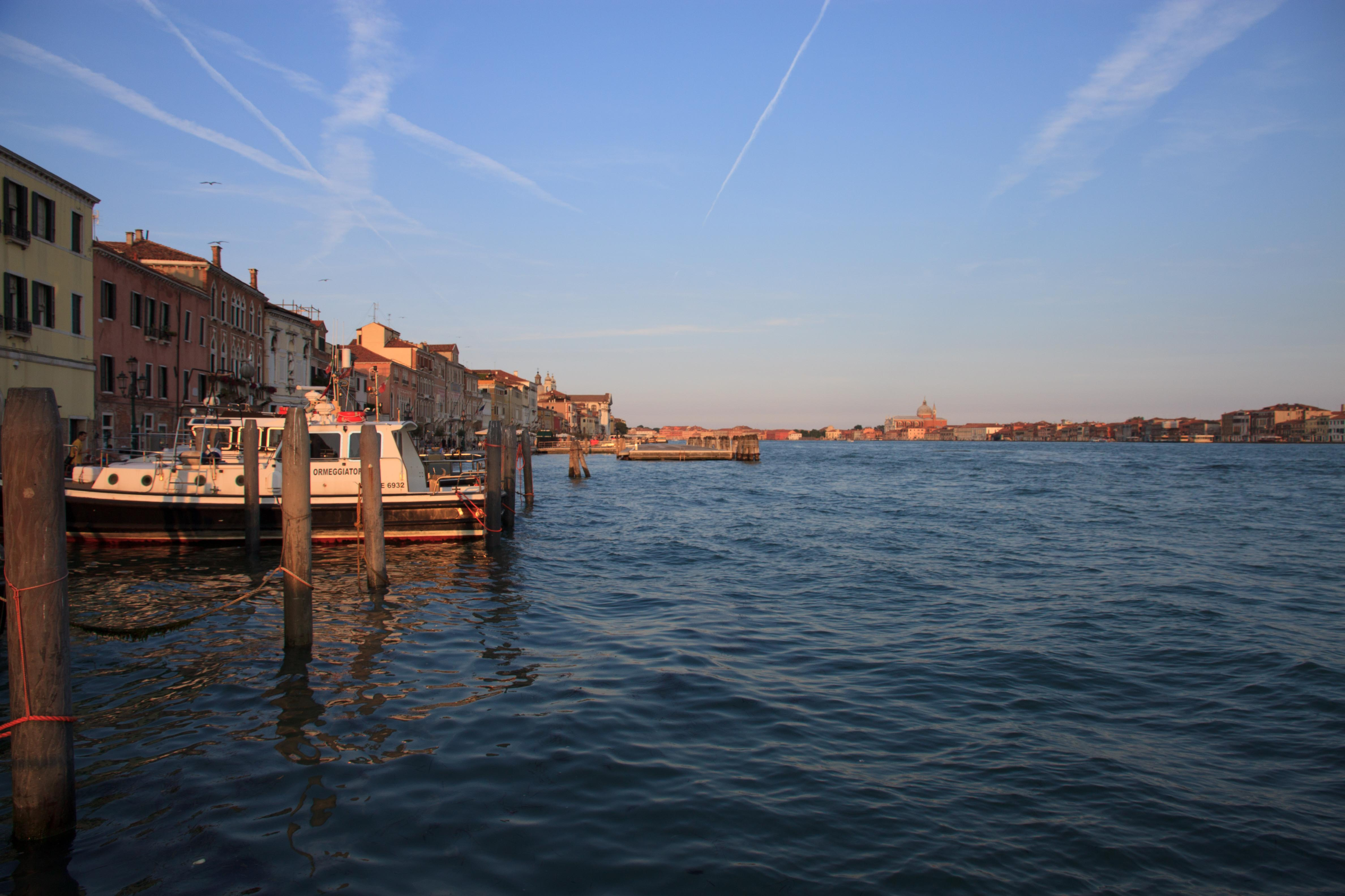 IMG_1590_Low-Res