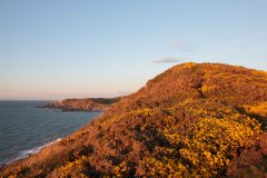 Bull Point from Morte Point. April 2015.