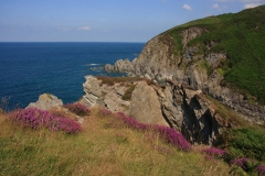 On the coastal path at Bennett's Mouth between Bull Point and Lee (between Ilfracombe and Woolacombe)