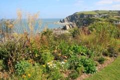 Cliffe Garden overlooking Lee near Ilfracombe