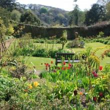 Walled Garden at Hartland Abbey, May 2013