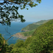 Woody Bay west of Lynmouth. June 2013