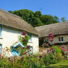 Thatched cottage in Georgeham