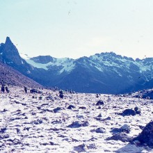 Mt Kenya: Frosty morning in the Teleki Valley. Christmas Day 1971.