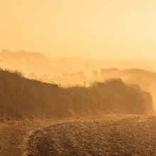 February: Fields near Georgeham on a frosty morning